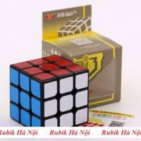 33 Guanlong V3 (2)