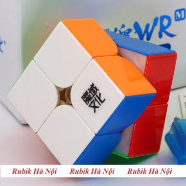 22 Moyu Weipo WR (8)