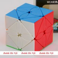 Skewb Maple Leaf (2)