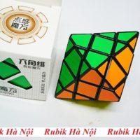 Diansheng 6 C (3)