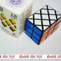 Diansheng Case (4)