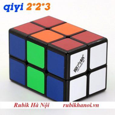 223 QY (5)