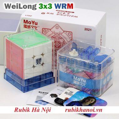 33 WRM21 (5)