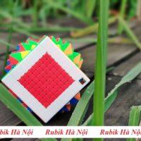 10x10 Meilong (3)